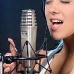 2 Kondensatormikrofone online kaufen - Infos und Tipps